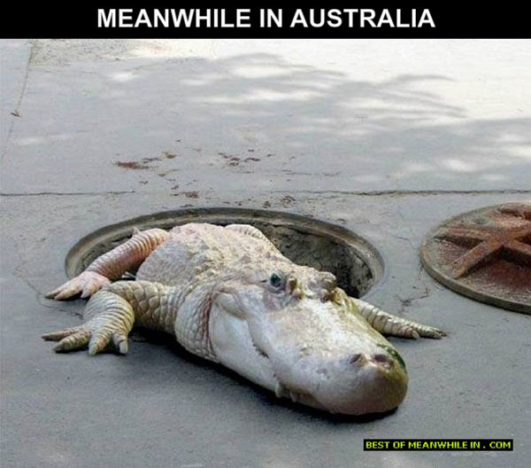 australia-your-neighbour