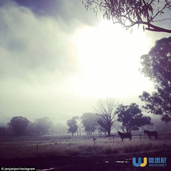 34C367A400000578-0-Frost_also_fell_in_Mudgee_in_NSW_as_cooler_temperatures_swept_ac-m-27_1464573437265