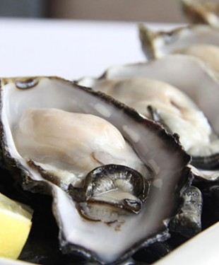 Oyster-promotion-at-ToTT's