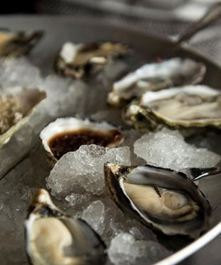oysters-morrison